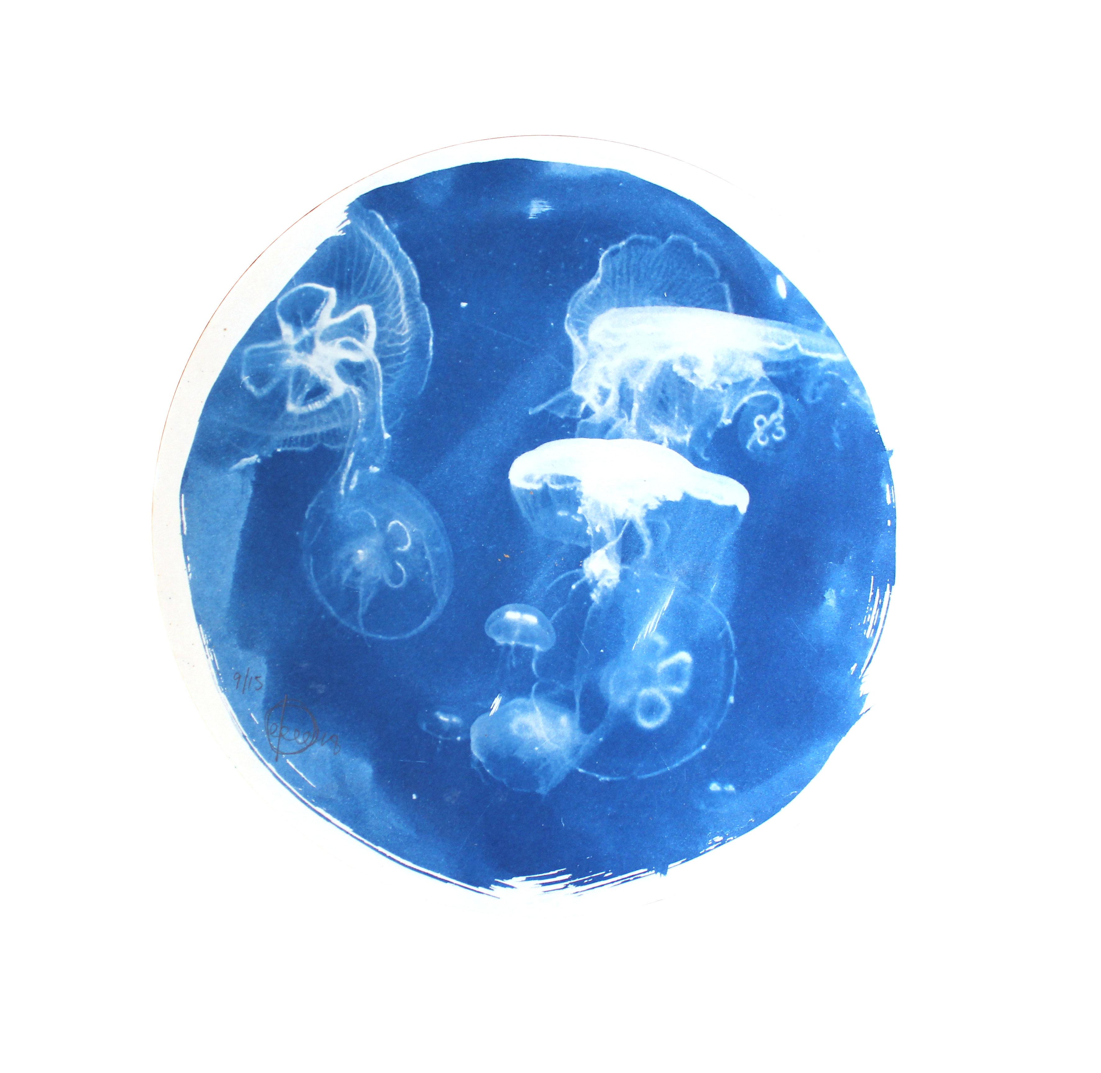 cyanotype-print-craig-keenan-blueprint-j