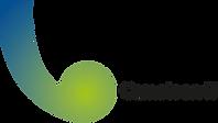 Logo+Cameleon+iT.png