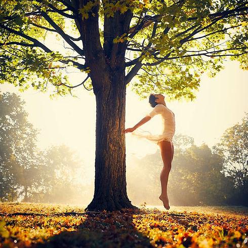 tree-jump.jpg