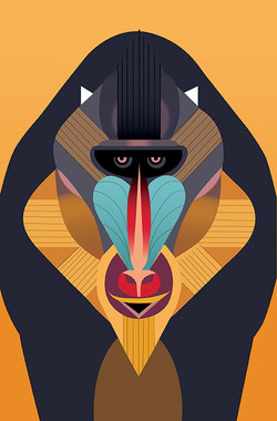 Copie Mandrill