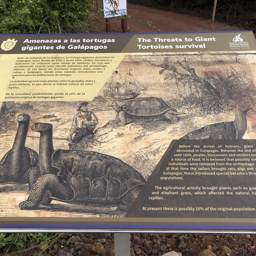 Estacion Charles Darwin- Santa Cruz