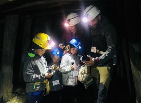 De Villarica à la côte Ouest – entre Volcan, sanctuaire de lobos et visite de mines.
