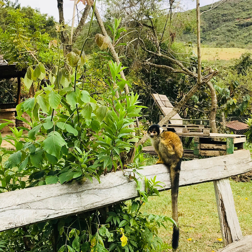 Refugio Jacha Inti
