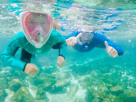 San Cristobal - notre coup de cœur snorkeling ! (1)