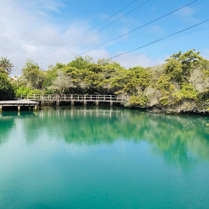 Laguna Las Niefas