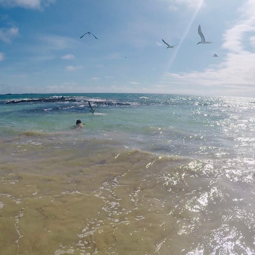 Playa Puerto Villamil