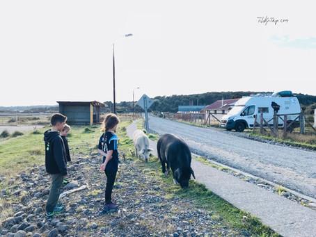 Fin de la carretera Austral- Hornopiren et les villages de pêcheurs...  Direction Puerto Montt...