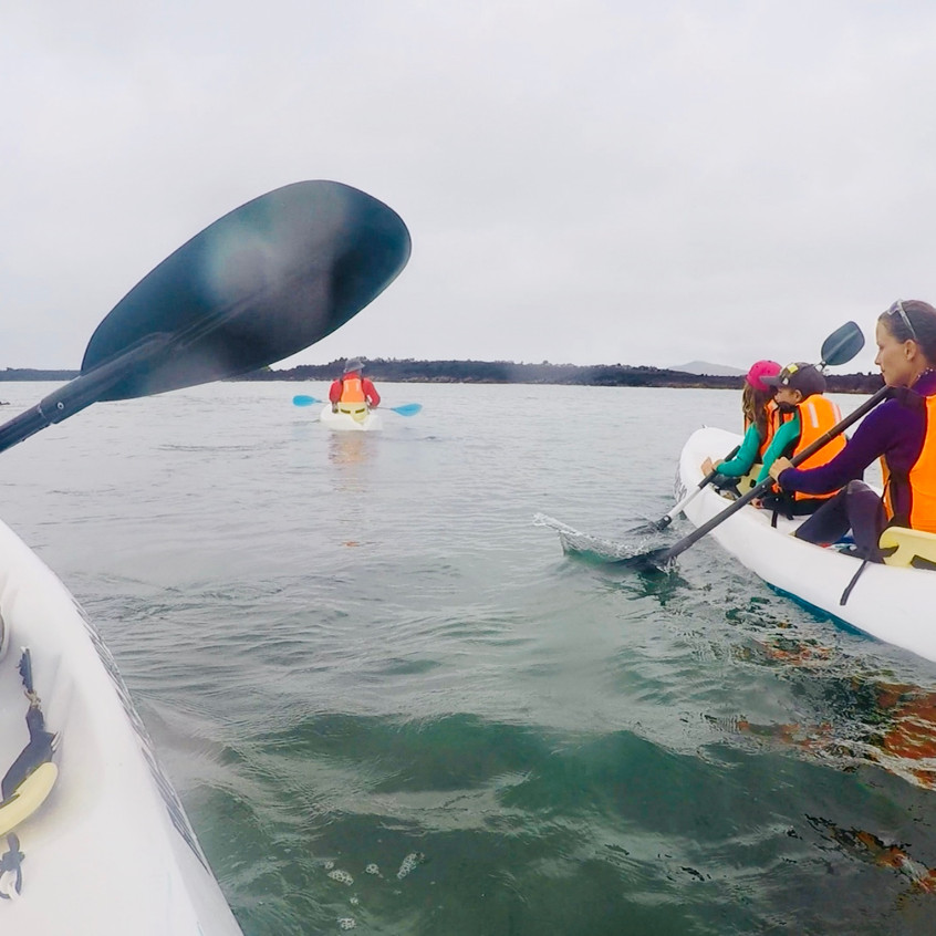 Kayak aux Tintorejas