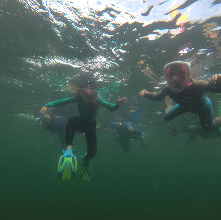 Snorkeling- Los Tuneles