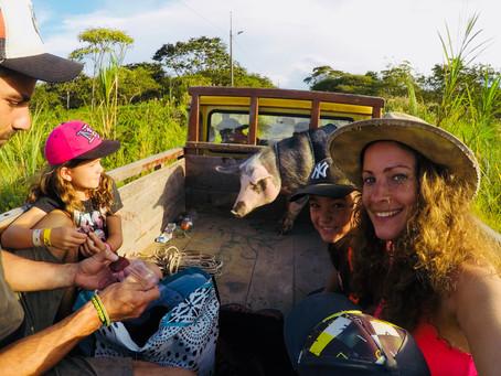 Comunidade Cumanda ..., C'est L'aventure !