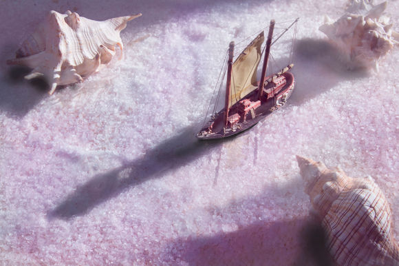 barco marron sal wix.jpg