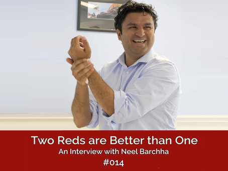 TRBO Season #002 Episode #014 –  An Interview with Neel Barchha