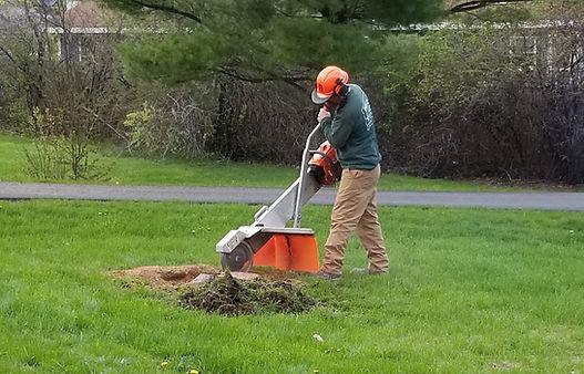 grinding a stump
