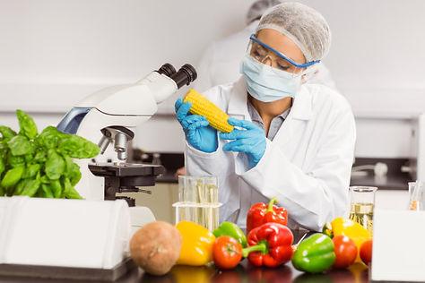 tecnologia-de-alimentos.jpg