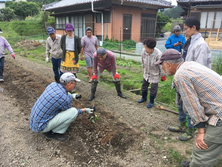 第3回 完熟堆肥を使った有機農業の勉強会