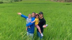 農のある暮らしツアー 田植え体験のお知らせ