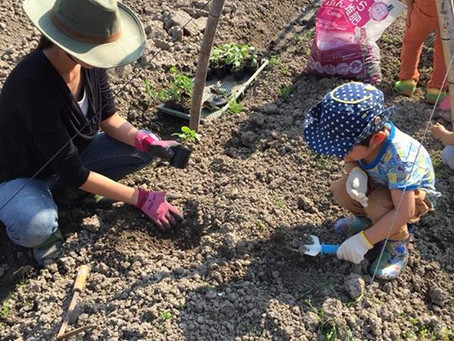 Ikaw-Ako 秋の農業体験お泊り会