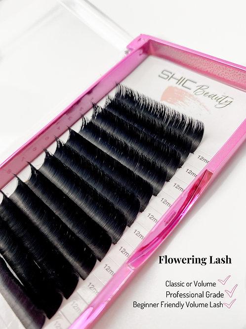 Flowering Lash (Volume)