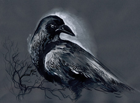 Story Insights: Why Ravens?