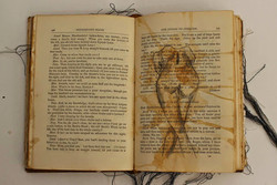 Untitled Altered book #5