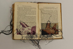 Untitled Altered book #2