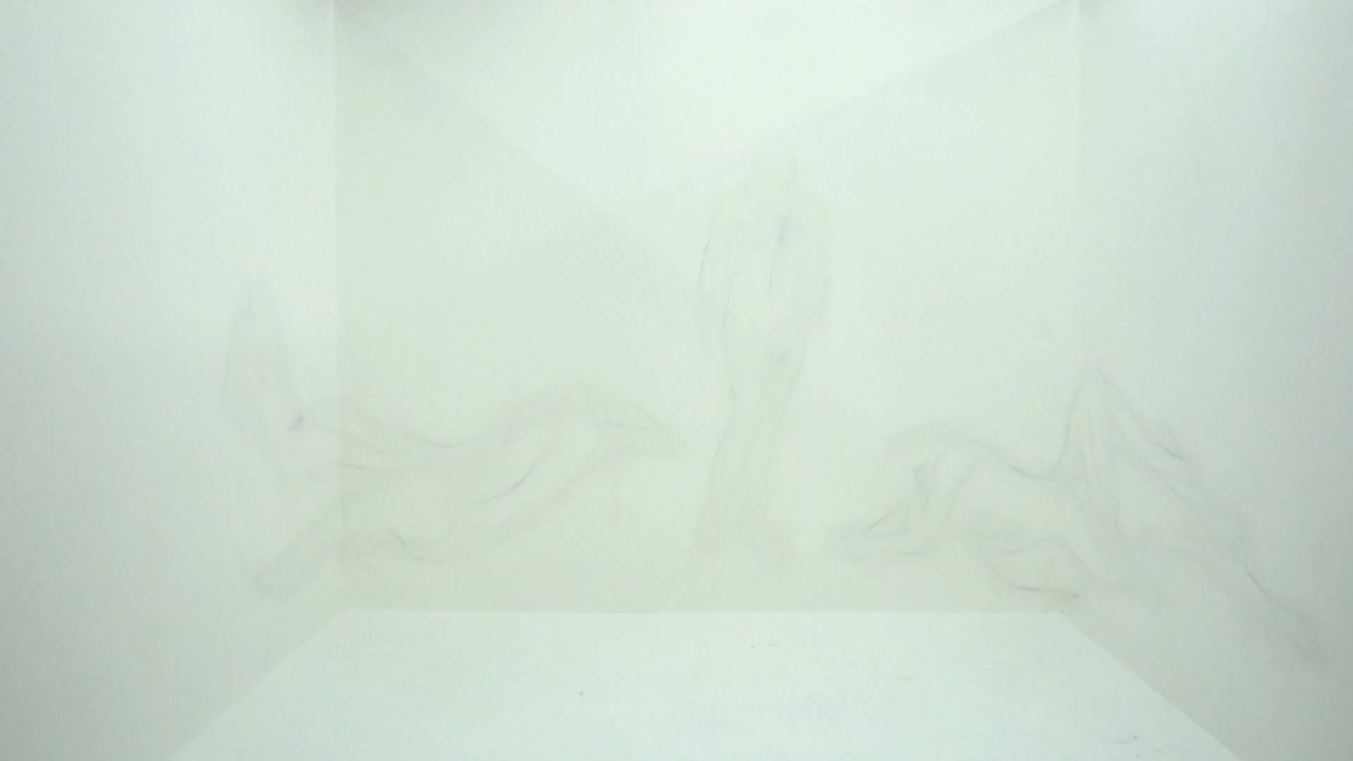 life drawing.01_07_59_09.Still037