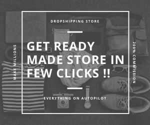 ready made dropshipping store.png