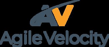 AV-logo-color (1) (5).png