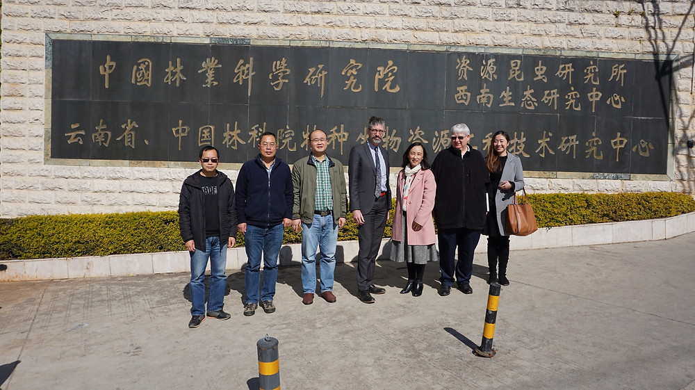 Research Institute for Resource Insects China