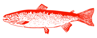 LOCO-AJAR-POISSON-24-INVERSE.png