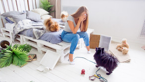 Is Your Dog Being A Nuisance?