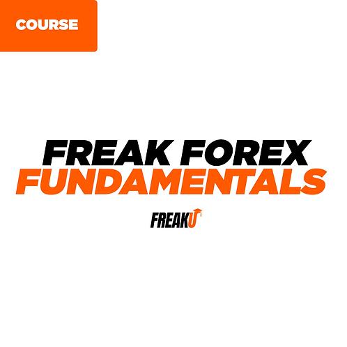 FreakU Fundamentals Course