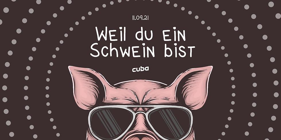 Weil du ein Schwein bist