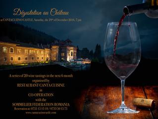 Vinuri argentiniene de excepție, pe 29 decembrie, la a treia degustare de vinuri organizata la Caste