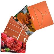 l2-cards.jpeg