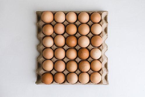 1 x 900g Tray Pastured Free Range Eggs (30 eggs)