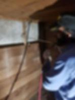 termite treatment.jpg