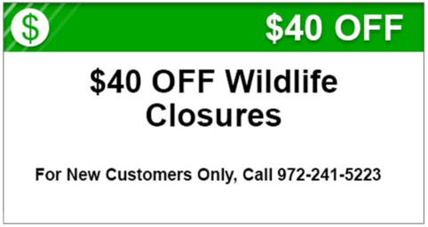 1526314-Coupon_40_Off_Wildlife_for_websi