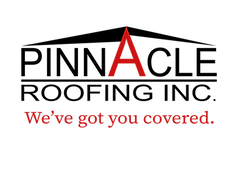 Pinn Logo - Slogan - Transparent Backgro