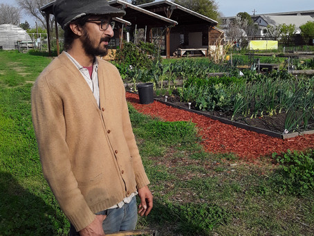 Permaculture in Stockton?