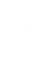voluteoi222-[Converti].png-Presque-blanc