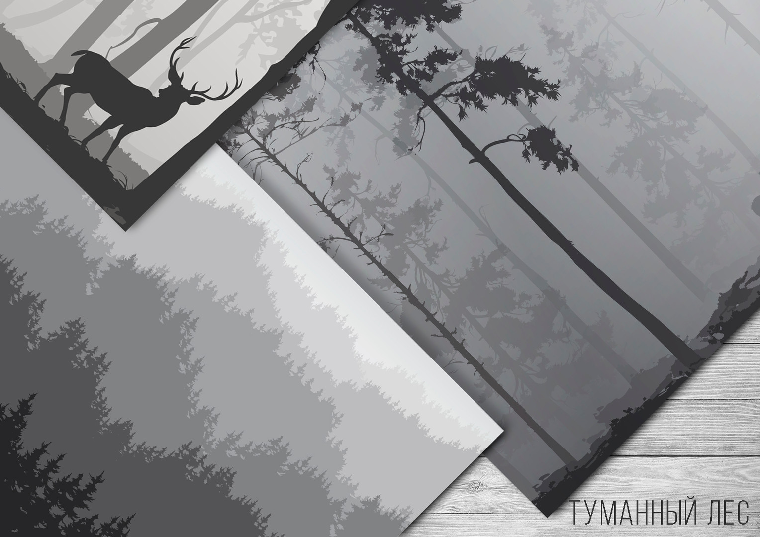 туманный лес.jpg