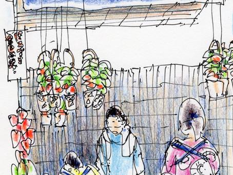 Houzuki market at Senso-ji