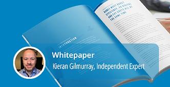 WhitePaper Kieran.png