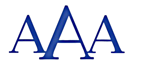AAA Security Logo