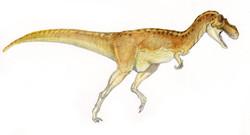 aquarelle T Rex