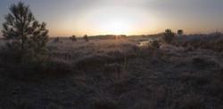 Panorama sur le lande de Millières