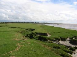 Littoral - Havre de la Sienne