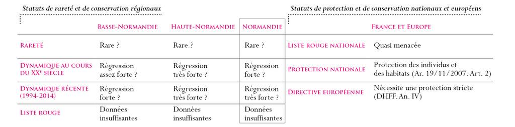 Statuts Grenouille de Lessona
