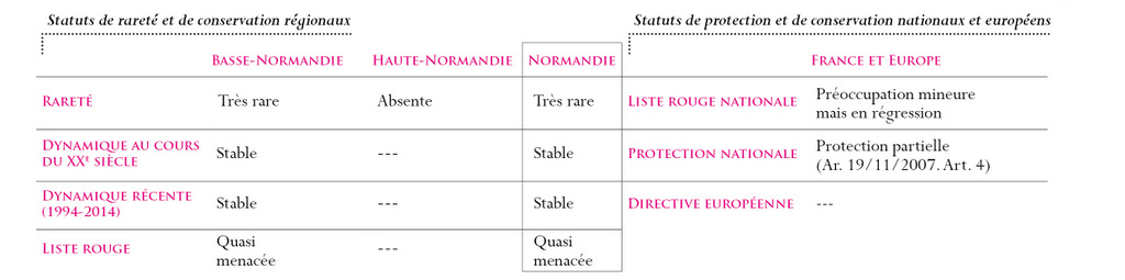 Statuts Vipère aspic